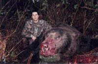Giant_Grizzly_Bear